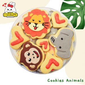 16 Cookies Animals